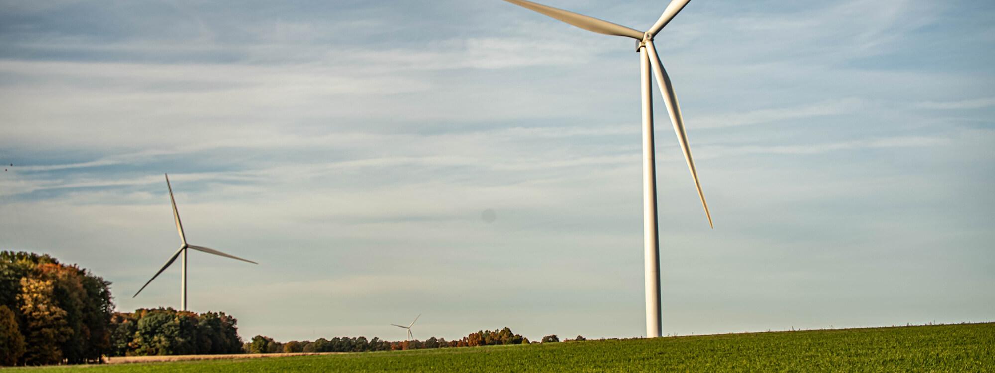 environment - Sustainability